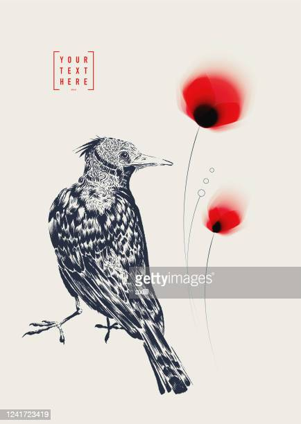 bird ink drawing with red flowers - poppy stock illustrations
