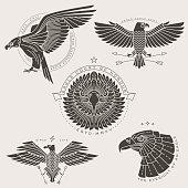 bird labels