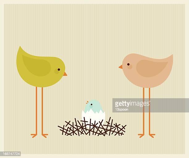 Vogel-Nest-Baby