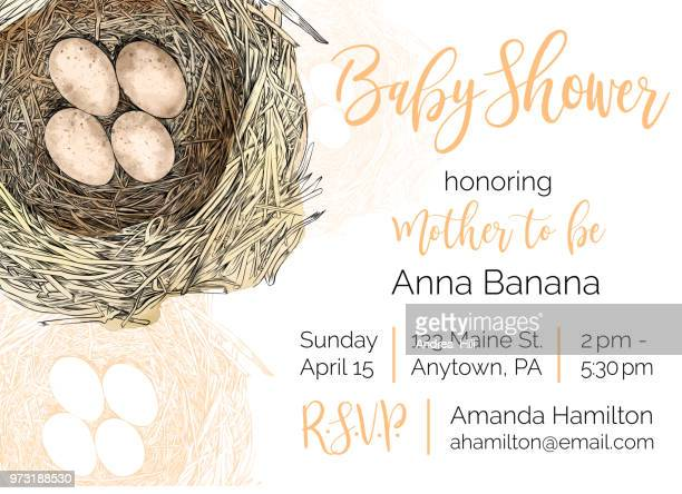 ilustrações de stock, clip art, desenhos animados e ícones de bird nest vector baby shower invitation design template - chadebebe