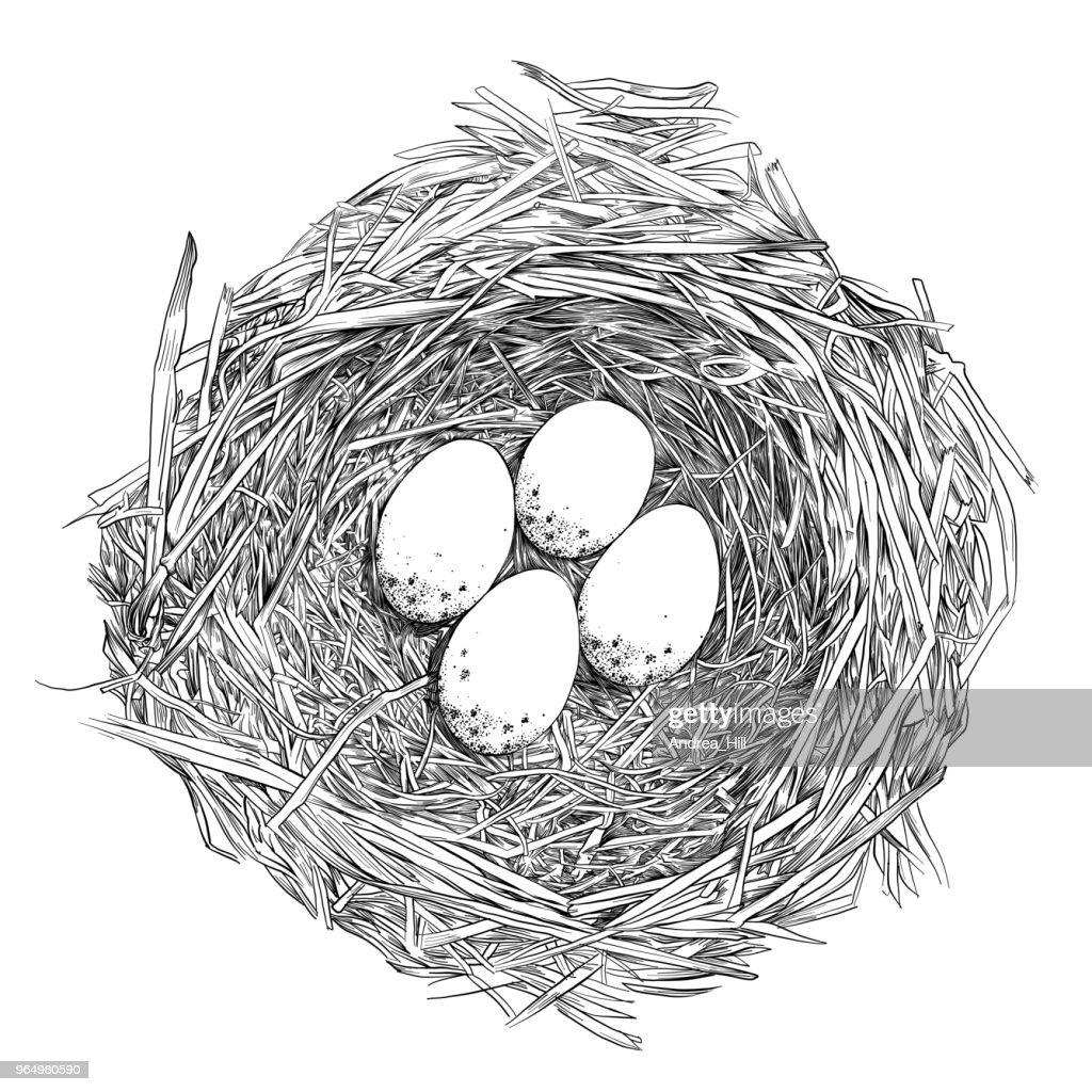 The Nest Drawing Winners | She Wears Many Hats