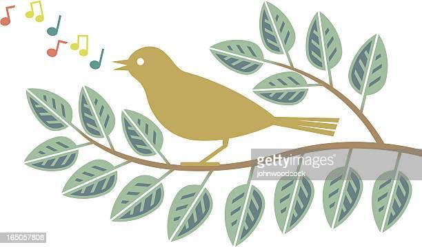 ilustrações de stock, clip art, desenhos animados e ícones de pássaro em um ramo - canto de passarinho