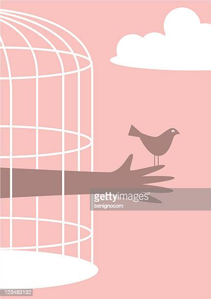 Bird Outside Cage