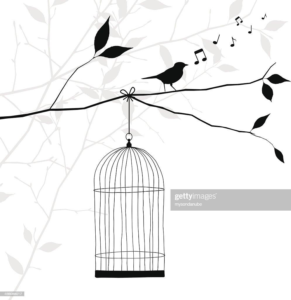 bird singing on tree branch - freedom concept