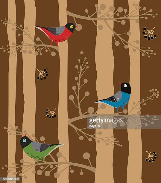 Bird  Sitting on the Tree, Forest