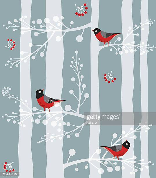 Bird  Sitting on the tree, Forest, Winter