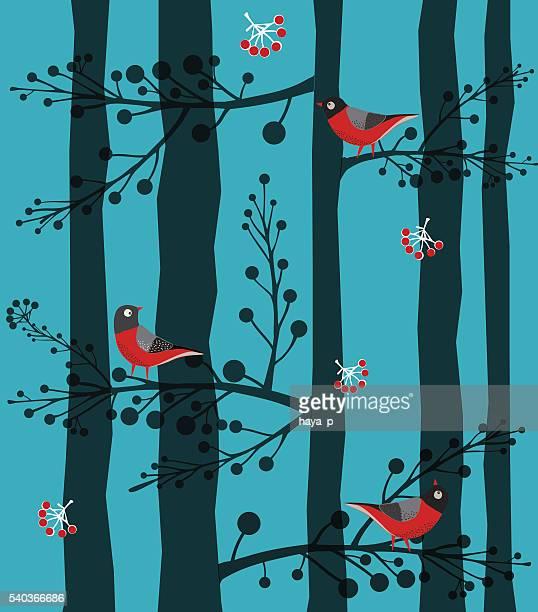 鳥に座っているの木、森林、冬