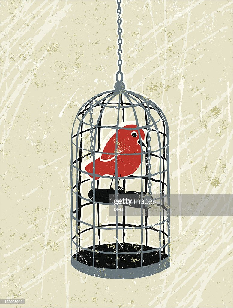 Bird Trapped in a Birdcage