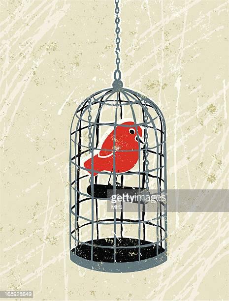 bird trapped in a birdcage - prisoner stock illustrations