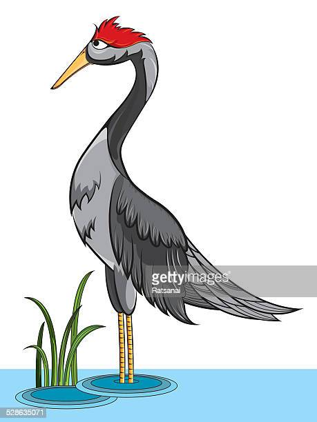 bird - animal limb stock-grafiken, -clipart, -cartoons und -symbole