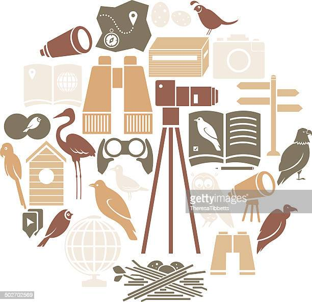 bird watching icon set - quail bird stock illustrations, clip art, cartoons, & icons