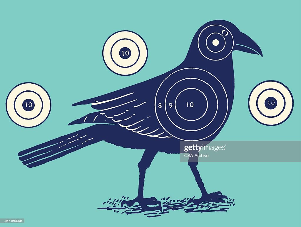 Bird With Shooting Targets : Stock Illustration