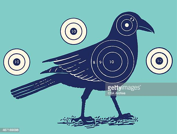 Bird With Shooting Targets