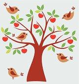 Birds and apple tree