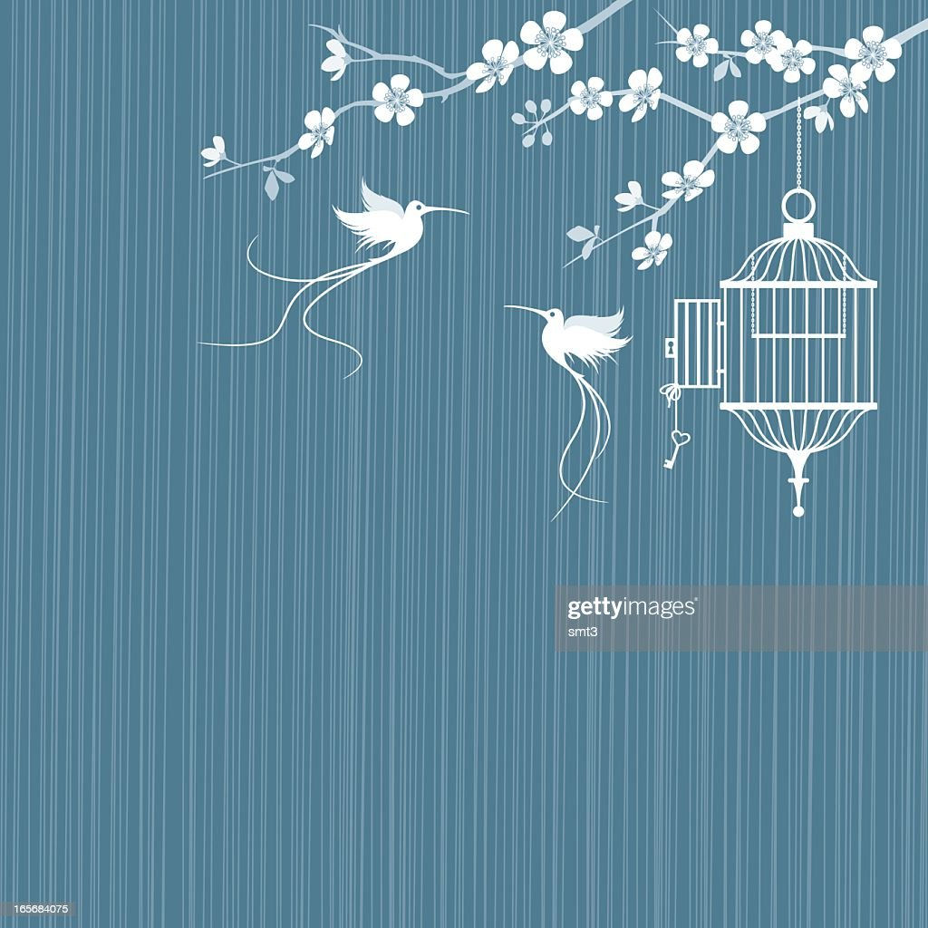 Birds and cage with cherry blossoms : stock illustration