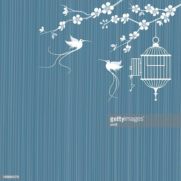 birds and cage with cherry blossoms - birdcage stock illustrations, clip art, cartoons, & icons
