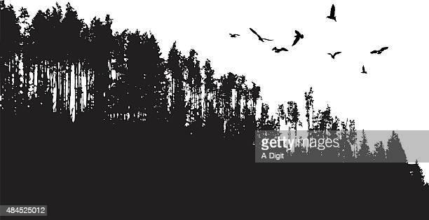 birds flying over treeline - treelined stock illustrations, clip art, cartoons, & icons