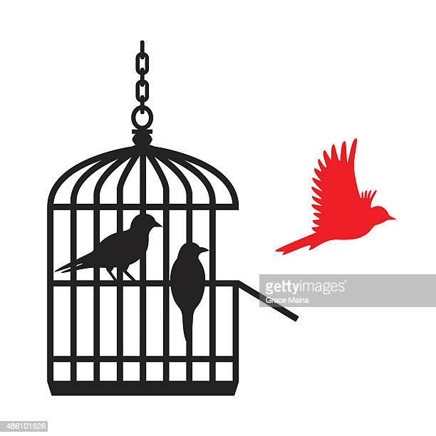 Birds in cage red one flying away - VECTOR