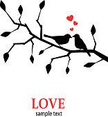 Birds in love on a branch