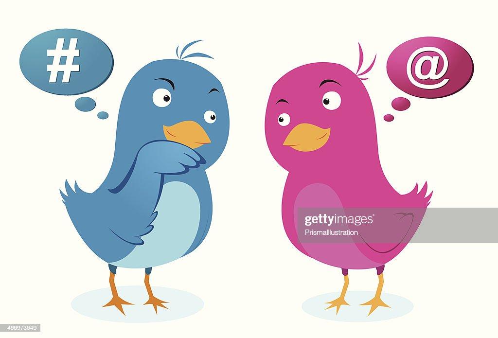 Birds love communication
