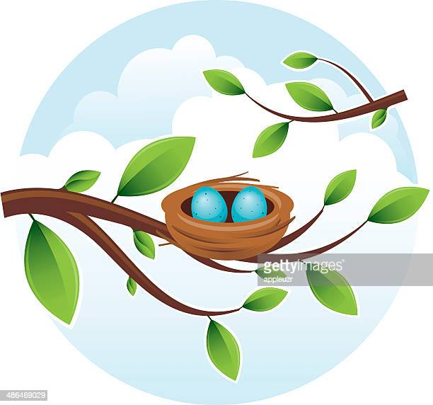 bird's nest with eggs - animal egg stock illustrations, clip art, cartoons, & icons