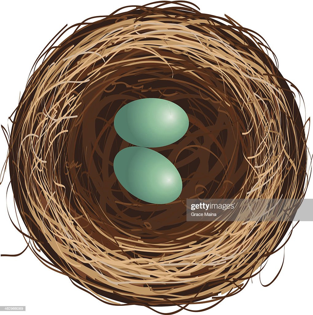 Bird's nest with two eggs