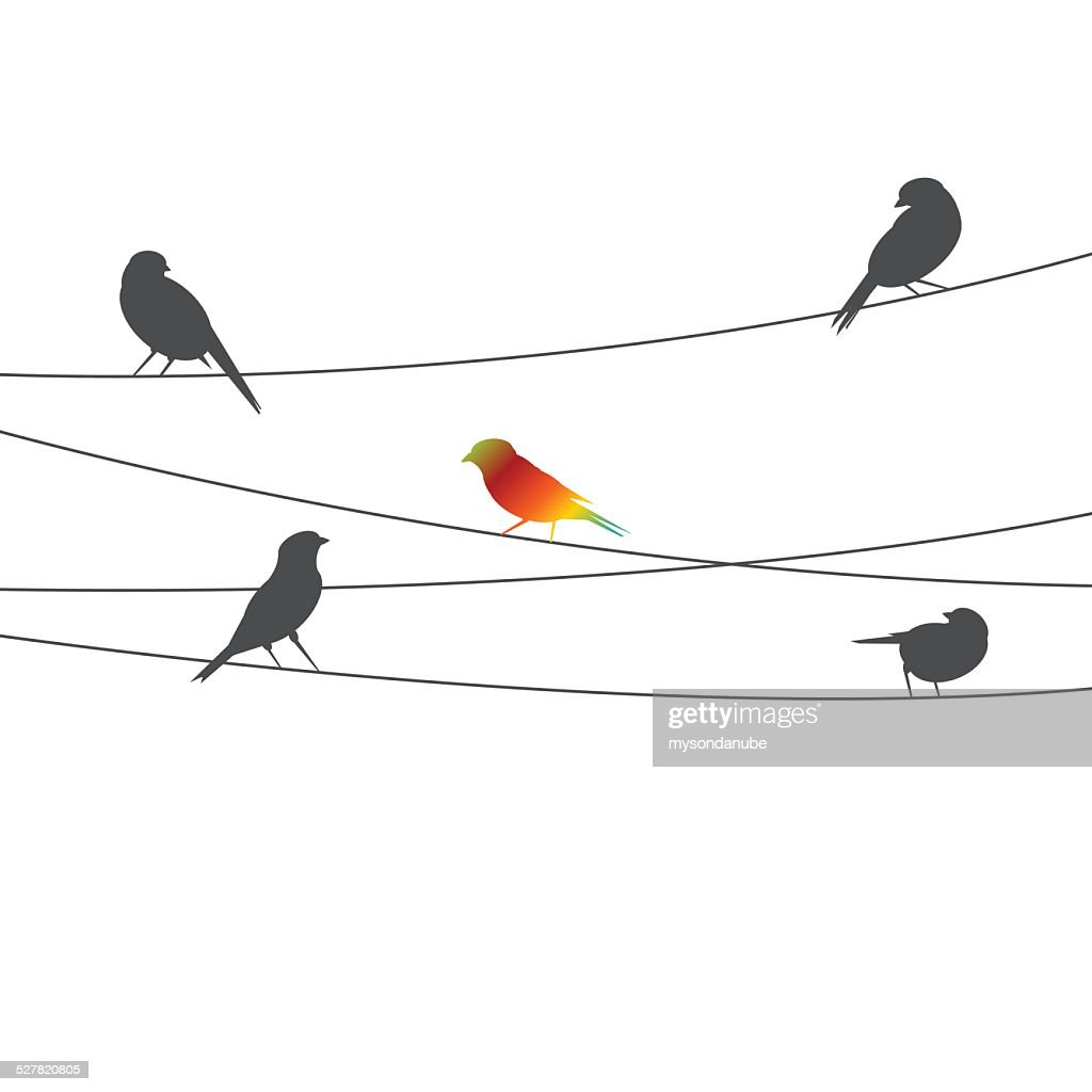 Birds on wire - think different concept