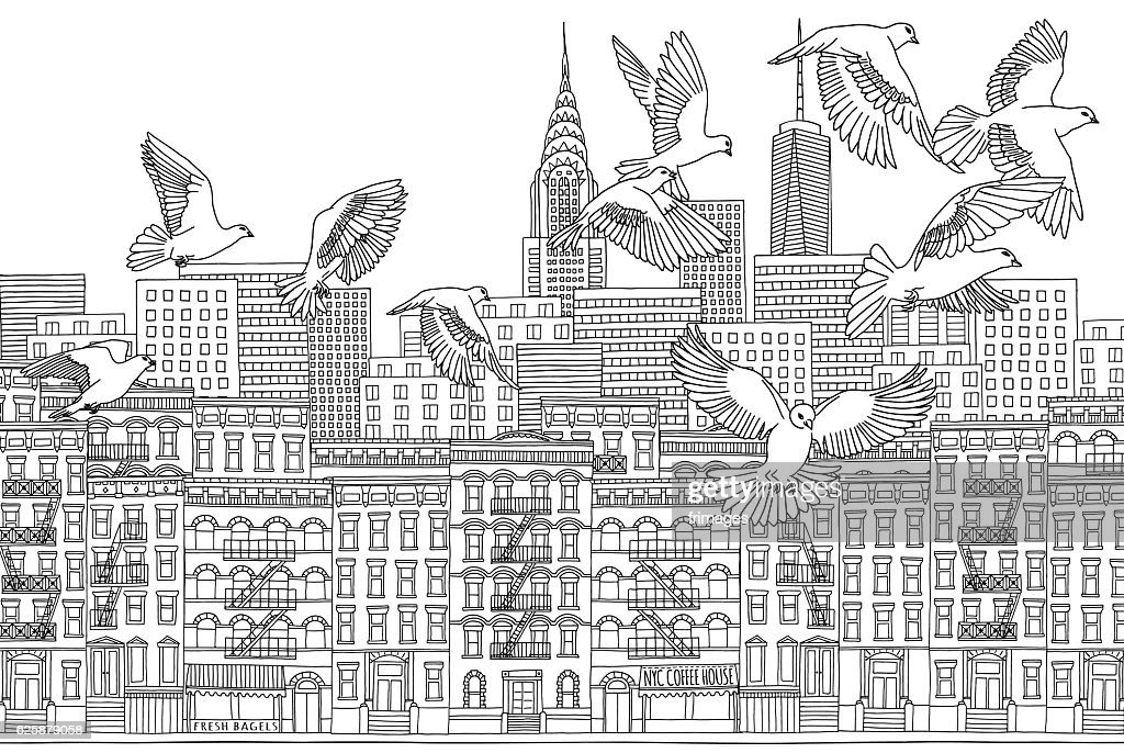 Birds over New York