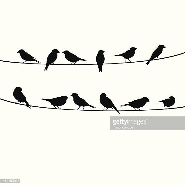birds resting on wire - bird stock illustrations