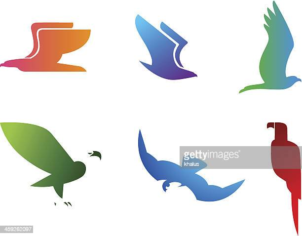 birds set - falcon bird stock illustrations, clip art, cartoons, & icons