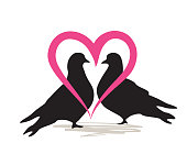 Birds silhoutte. Two birds in love