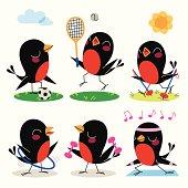 Birds Sports.