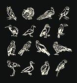 Birds vector white doodle icon set