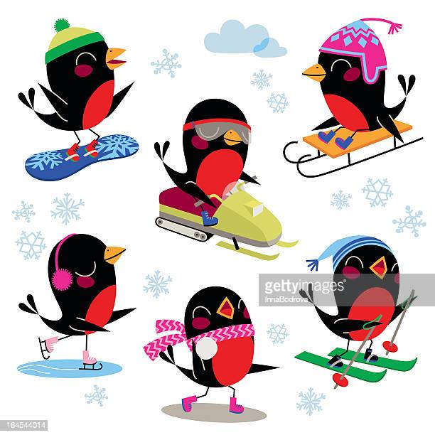 birds winter sport. - tobogganing stock illustrations, clip art, cartoons, & icons