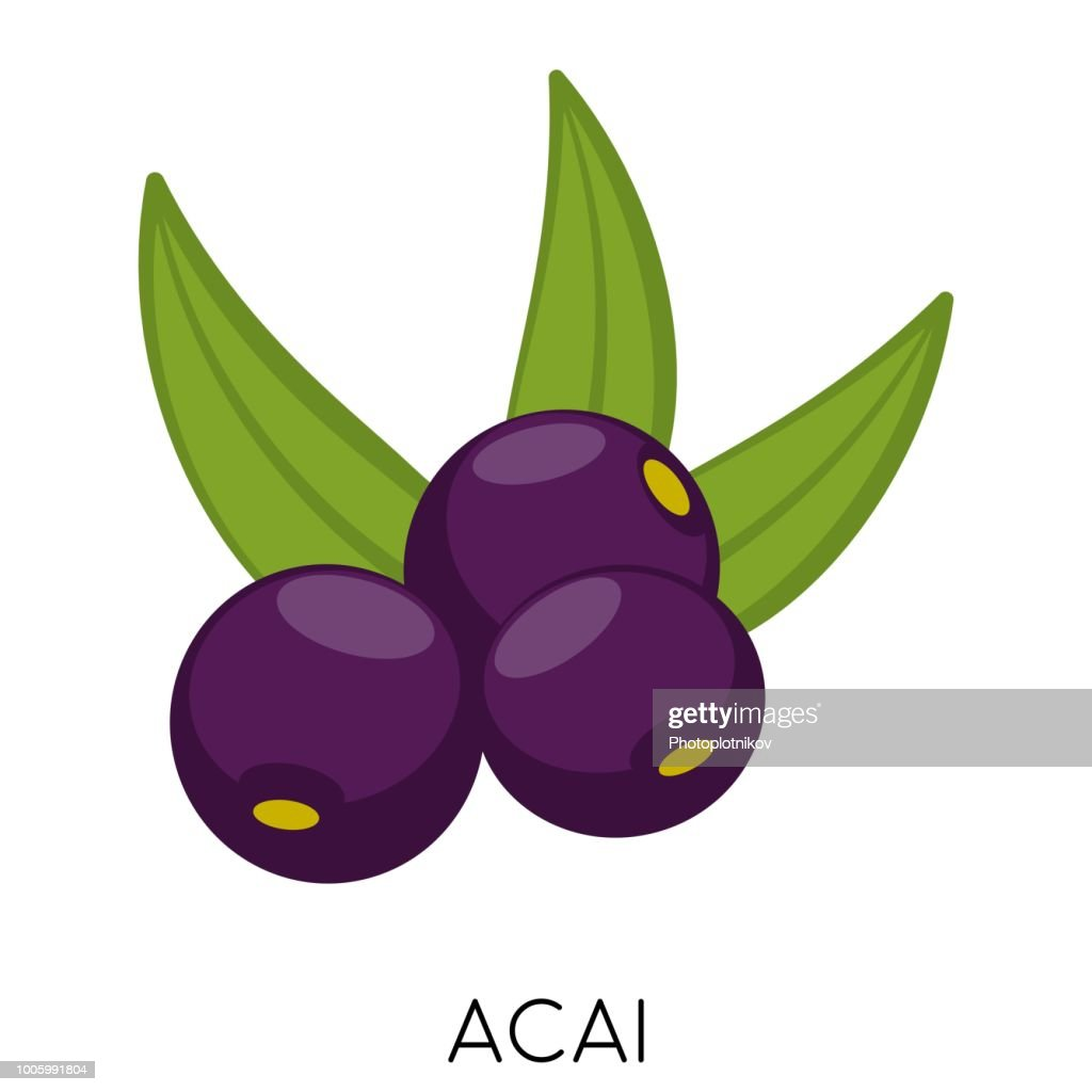 Black Acai berry flat icon isolated on white background. Exotic fresh amazon nutrition. Eco delicious food