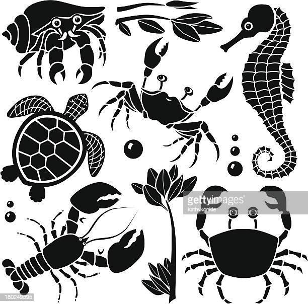 Criaturas elementos de design do mar