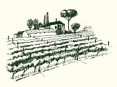 Black and white drawing of a vineyard with an estate