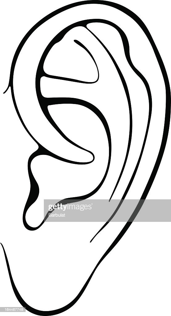 Black And White Drawing Of Human Ear Vector Art Getty Images