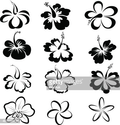 Black and white drawings of tropical flowers vector art getty images mightylinksfo Images