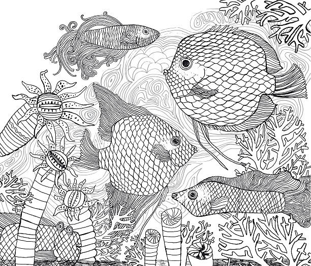 Black And White Fish Corals Vector Illustration For Coloring In