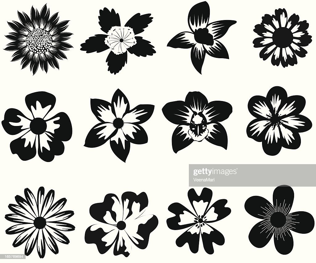 Black And White Flower Silhouette Vector Art Getty Images