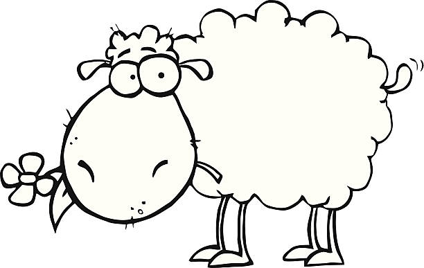 free sheep and flowers images
