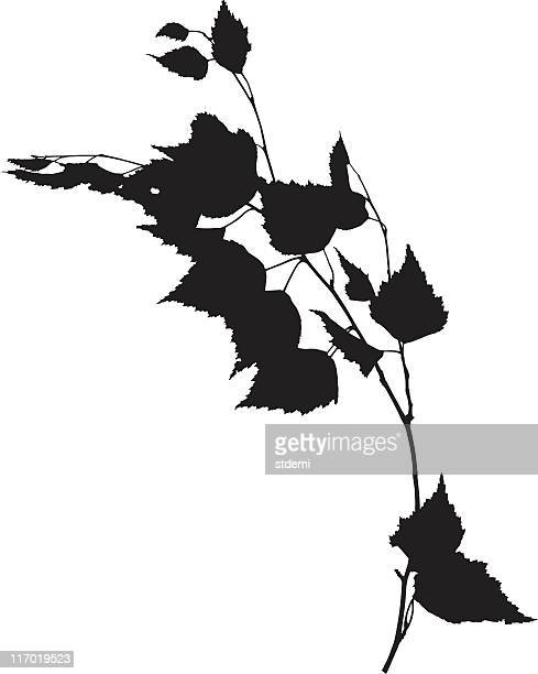 Black and white graphic of a branch and leaves
