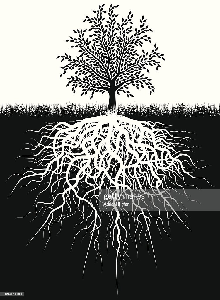Black and white illustration of tree and the roots in ground