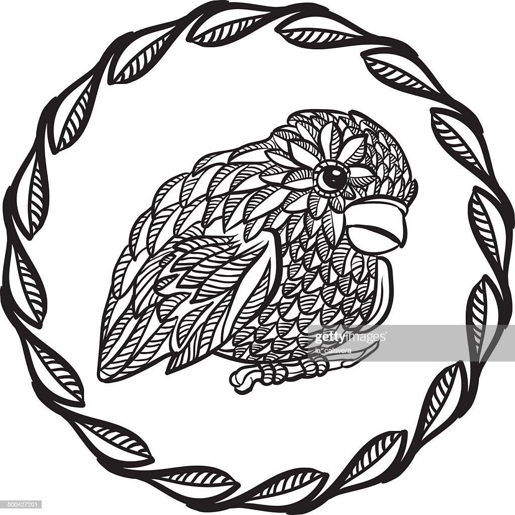 Black and white ornate bird