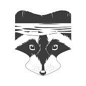 black and white raccoon head