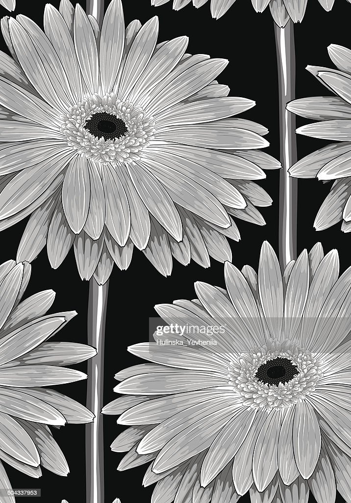 black and white seamless background with gerbera flower