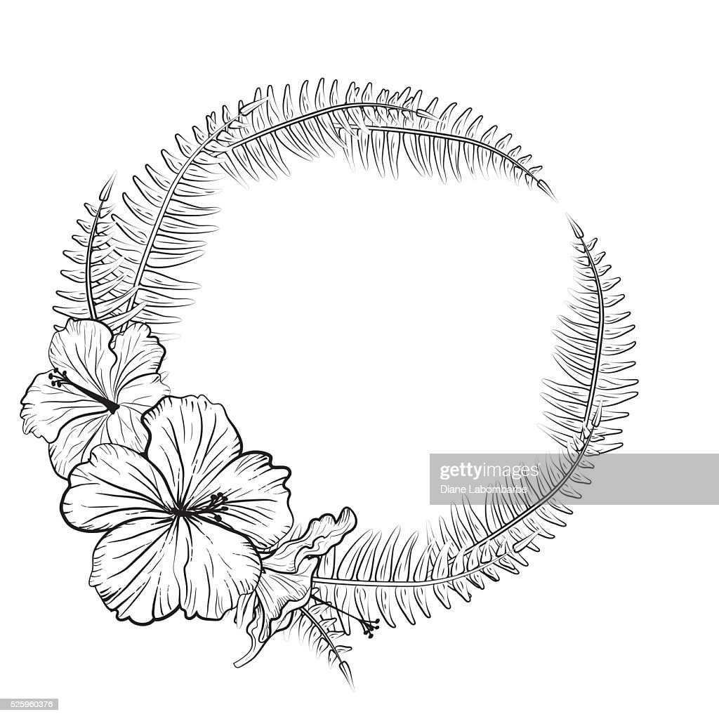 Black And White Tropical Hibiscus Floral Frame Vector Art Getty Images