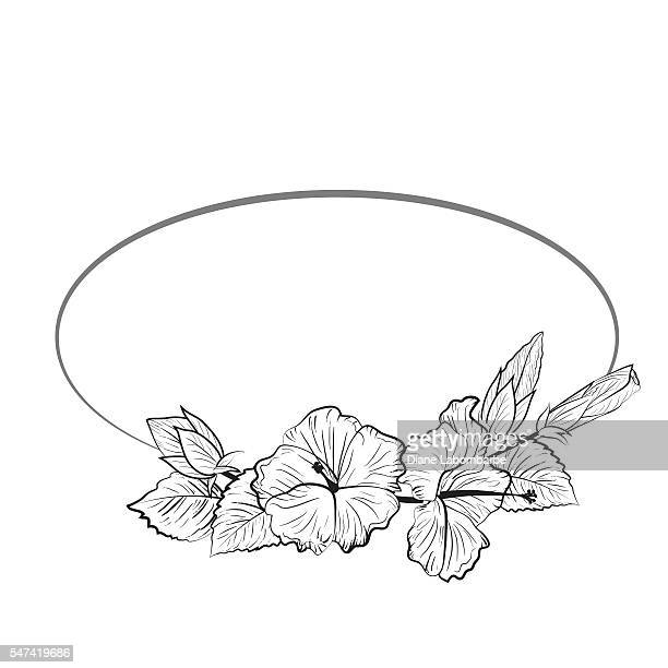 Black and White Tropical Hibiscus Floral Frame