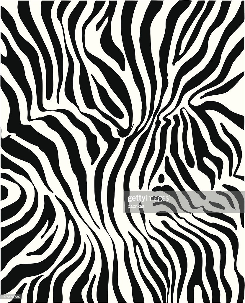 Black and white zebra skin background